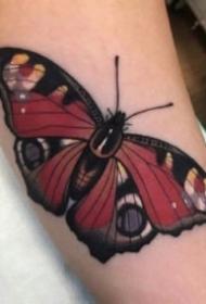 漂亮的蝴蝶纹身手稿和图案