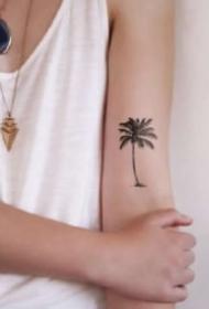 小清新感觉的椰子树纹身图案