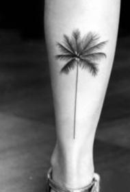 一棵黑色的小椰子树纹身图案