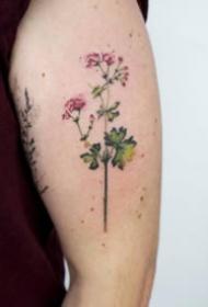 胳膊上清新的小花卉纹身图案