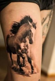 几款黑灰写实的骏马纹身图案