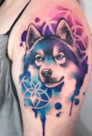 梦幻水彩色的宠物纹身图案