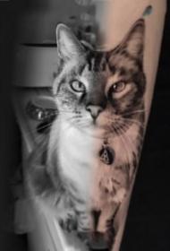 非常逼真的宠物猫狗纹身图片欣赏