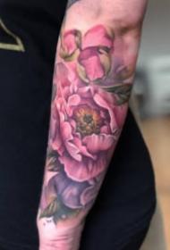 水彩色风格的粉色玫瑰纹身图案