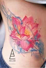 多种风格的莲花纹身图案