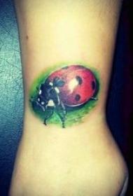 有趣的七星瓢虫纹身图案