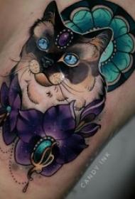 多种风格的猫咪纹身图案