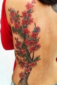 漂亮好看的樱花纹身图案