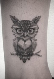 眼神锐利的猫头鹰纹身图案
