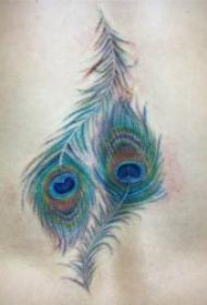 绚丽柔美的孔雀翎纹身图案