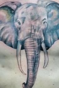 憨态可掬的小象纹身图案
