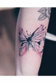 适合女生的蝴蝶主题纹身图案