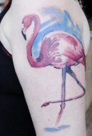 不同种类的鸟主题纹身图案欣赏
