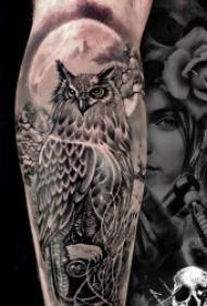 眼睛明亮的猫头鹰纹身图案