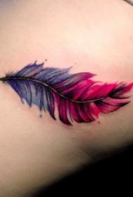 好看的羽毛系列纹身图案