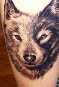 眼神凶狠的狼纹身图案