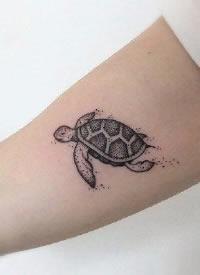 一波可爱的小海龟纹身图案