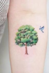 代表着生机和活力的绿色小树纹身图案