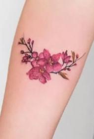 小臂上的艳丽的植物花卉纹身图案