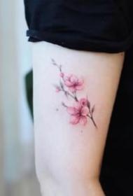 适合女生的唯美粉色樱花纹身图案