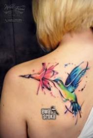一组水彩飞鸟纹身图案大全