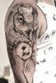 黑灰风格猫头鹰纹身图案大全