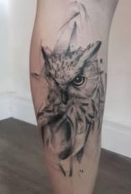 一组猫头鹰的动物纹身图案大全