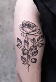 18张点刺风格的花卉纹身图案