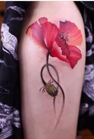 艳丽的红色罂粟花纹身图案大全