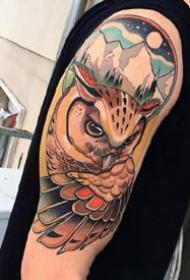 一组猫头鹰的纹身手稿和图案