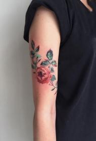 含蕾欲放的玫瑰花纹身图案