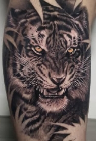 欧美写实9款老虎头纹身图案