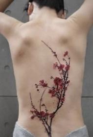 后背梅花纹身 漂亮的中国风背部梅花纹身作品图案