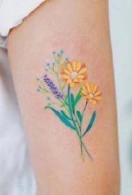 一组彩色可爱的精致纹身